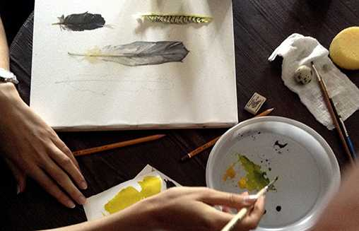«Птичьи символы». Отчет