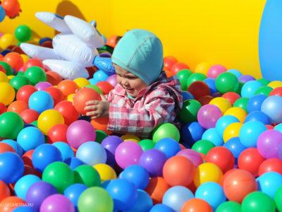 28 мая 2017 года на территории Центрального парка культуры и отдыха им. Маяковского состоится долгожданный фестиваль детства «Компот без косточек».