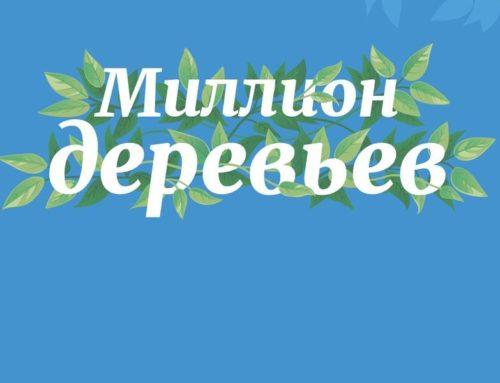 Первый шаг на «зеленом пути»: сажаем деревья вместе с издательством БОМБОРА