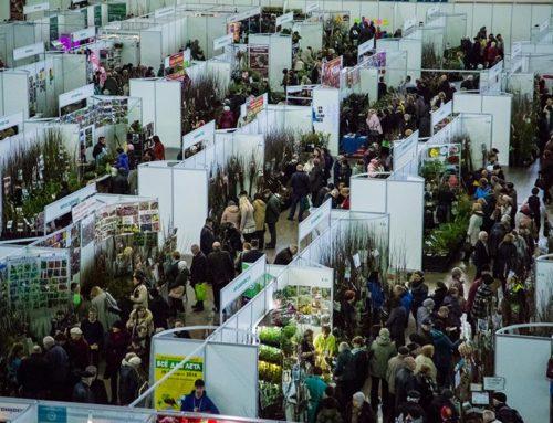 XIII специализированная выставка-продажа «Петербургская Зелёная Неделя»